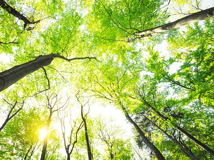 ATAIR CSR Nachhaltigkeit